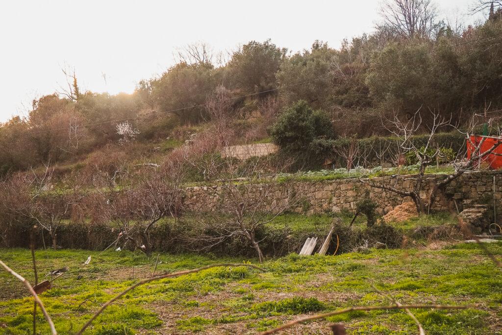Pozos del Lino de Baños de Montemayor