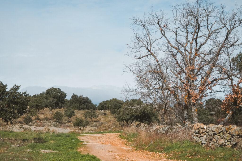 Ruta hacia el Embalse del Villar desde Manjirón