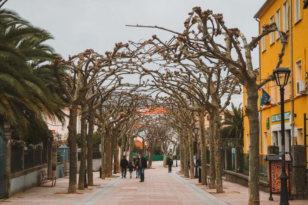 Calle Braulio Navas