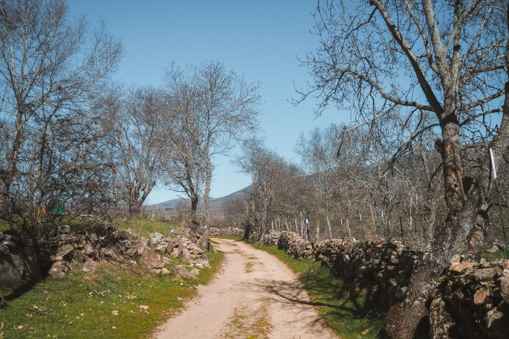 Camino al Molino de la Nava en Paredes de Buitrago